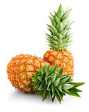 Fresh pineapple fruits with green leaves stock photos