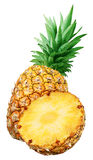 Fresh pineapple and a half isolated Royalty Free Stock Image