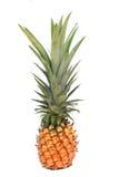 Fresh pineapple isolated on white. Background Stock Photos