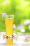Fresh pineapple juice Stock Photos