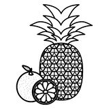 Fresh pineapple with oranges stock illustration