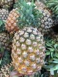 Fresh pineapple Stock Photos