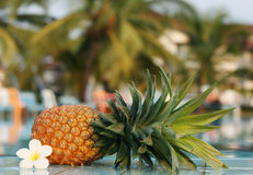 Fresh pineapple and pool Royalty Free Stock Image
