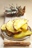 Fresh pineapple slices Royalty Free Stock Photos