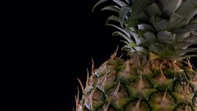 Fresh pineapple spinning on black background. Turntable stock footage