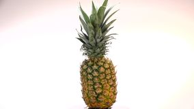 Fresh pineapple spinning on white background. Turntable stock video footage