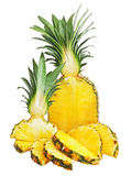 Fresh pineapple on white background. Royalty Free Stock Photography