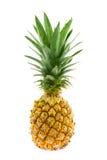 Fresh  pineapple Royalty Free Stock Photos