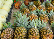 Fresh pineapples being sold in fruit market Stock Image