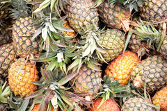 Fresh pineapples at an outdoor market Stock Photos