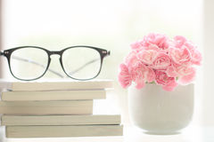 Fresh pink carnation flower with books background Royalty Free Stock Photos