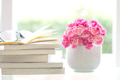 Fresh pink carnation flower with books background Stock Photos