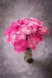 The Fresh pink carnation flower on stone plate background Stock Photos