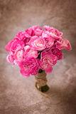 The Fresh pink carnation flower on stone plate background Stock Photography