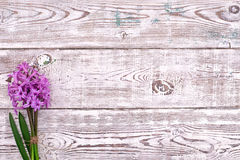 Fresh pink flowers hyacinths on white wooden table. Top view, copy space. Stock Photos