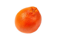 Fresh pink grapefruit Stock Images