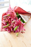 Fresh pink lilies Stock Photos