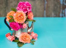 Fresh pink and orange roses in metal teapot Royalty Free Stock Photography