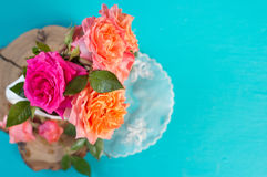 Fresh pink and orange roses over blue background Royalty Free Stock Photos