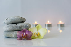 Fresh pink orchid near, gray stones on a white background. Concep. Fresh pink orchid near gray stones on a white background. Concept spa and relaxation Royalty Free Stock Photos