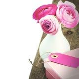 Fresh pink peonies in vase Royalty Free Stock Images