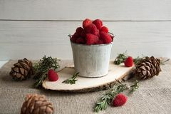 Fresh pink raspberry in a small bucket. Beautiful fresh pink raspberry in a small bucket with cones and rosemary Royalty Free Stock Photography