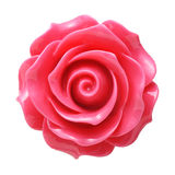 Fresh pink rose button royalty free stock photography