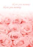 Fresh pink roses border Royalty Free Stock Photography