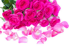 Fresh pink  roses bouquet with petals Royalty Free Stock Image