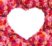 Fresh pink roses frame Royalty Free Stock Image