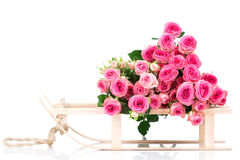 Fresh pink roses. Royalty Free Stock Photography