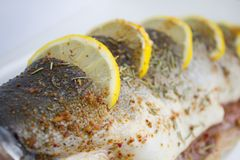 Fresh Pink Salmon prepared for cooking Royalty Free Stock Image