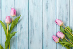 Fresh pink tulip flowers on blue wooden table, top view with copy space Royalty Free Stock Photo