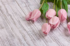 Fresh pink tulip flowers bouquet on white wooden rustic table Royalty Free Stock Photo