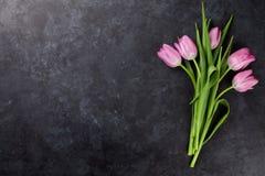 Fresh pink tulip flowers Royalty Free Stock Photos