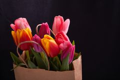 Fresh pink tulip flowers in paper bag. royalty free stock photos