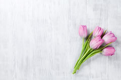 Fresh pink tulip flowers Royalty Free Stock Image