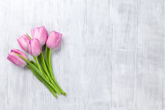 Fresh pink tulip flowers Stock Images