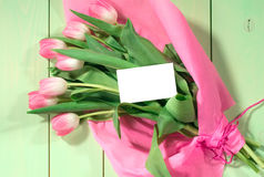 Fresh pink tulips Stock Photography