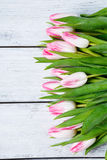 Fresh pink tulips on boards Stock Photography