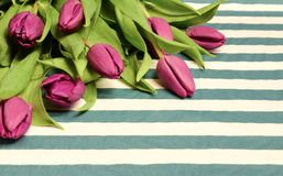 Fresh pink tulips. Easter - fresh pink tulips on a napkin Royalty Free Stock Image