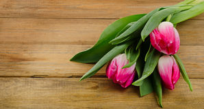 Fresh Pink tulips on old  wooden background Stock Image
