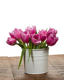 Fresh pink tulips in a white can Stock Images