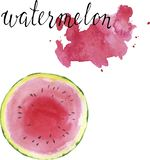 Fresh pink watermelon with pink backdrops. Hand drawn watercolor illustration. Fresh pink watermelon and pink backdrops isolated on white background. Hand drawn stock illustration