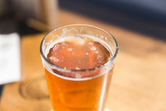 Fresh Pint of Beer in Sunlight Stock Image