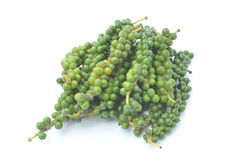 Fresh Piper nigrum Linn on white background Royalty Free Stock Photos