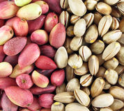 Fresh pistachios. Fresh peeled and unpeeled pistachios Stock Photography