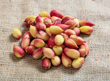 Fresh pistachios on a burlap Stock Photos