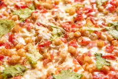 Fresh pizza close up. royalty free stock images