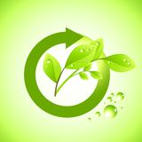 Fresh plant Icon stock illustration
